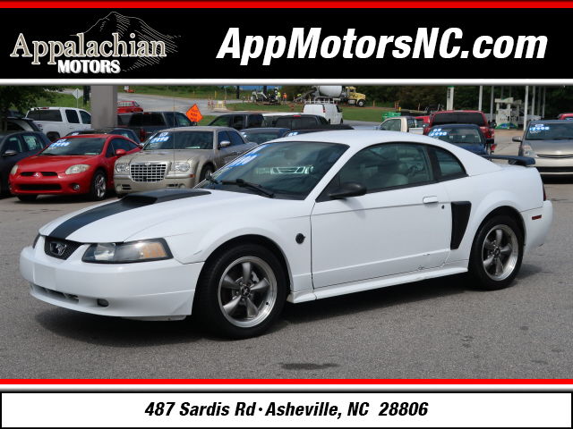 The 2004 Ford Mustang GT Deluxe photos